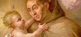 stellamatutina-san-giovan-giuseppe-della-croce