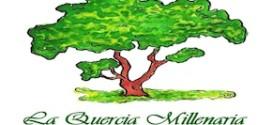 stellamatutina-la-quercia-millenaria-onlus