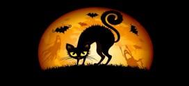 stellamatutina-halloween-gatto-streghe