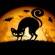 Halloween: Festa dell'ignoranza e della superstizione